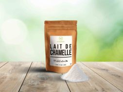 lait-de-chamelle-scaled
